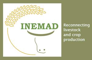 INEMAD